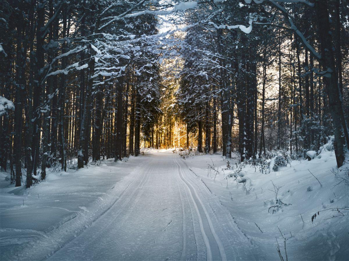 Winterwandeling is gezond